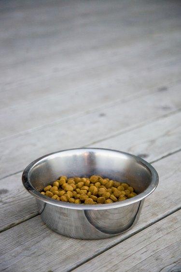 Dog food on deck