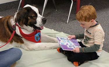 dog helping child read