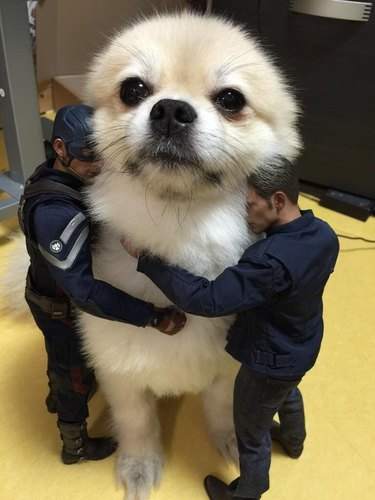Small dog being embraced by two action figures
