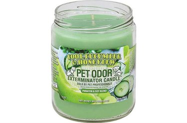 Neutralize animal smells with the Pet Odor Exterminator Cool Cucumber Candle
