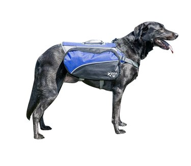 Blue 2PET Dog Backpack with Saddlebags