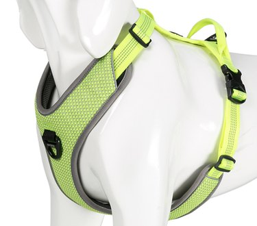 Neon Green Chai's Choice Best Outdoor Adventure II Harness