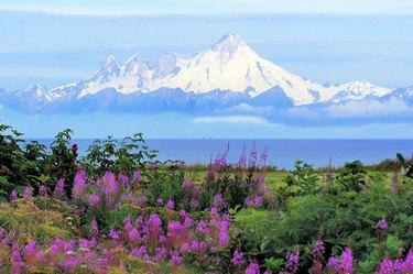 Mt. Iliamna in Alaska