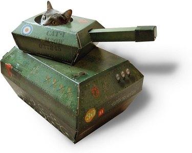 cat hiding in cardboard tank cat toy