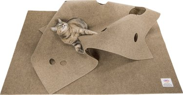 cat plays on ripple rug activity bed