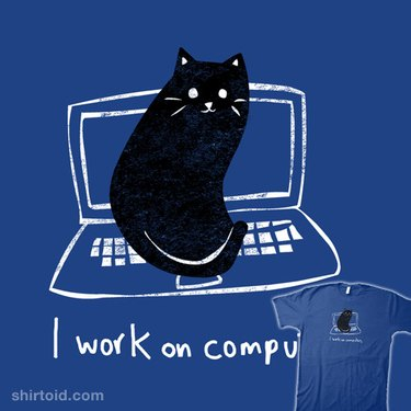 cat sits on laptop