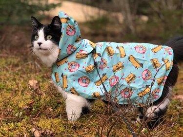 cat in donut paneled rain poncho