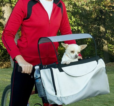 Tagalong Sport Pet Bicycle Basket for dogs (and cats!)
