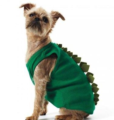 Doggy-saurus Rex