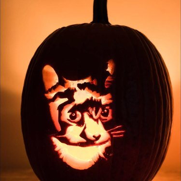 Jack'o'lantern carved with a cat's face.