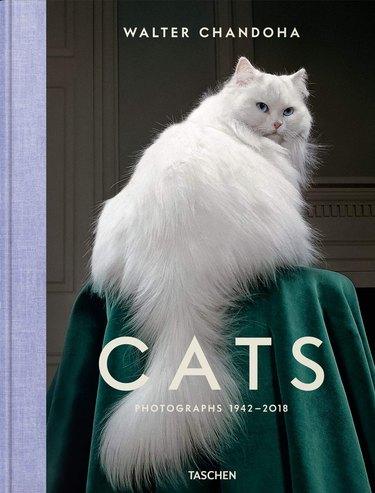 Walter Chandoha Cats photograph book