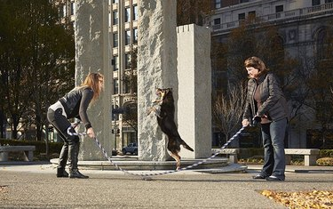 dog jumping rope with two women