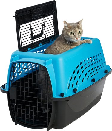 cat peers out of top load two door plastic pet carrier