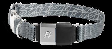 Fi GPS Smart Dog Collar