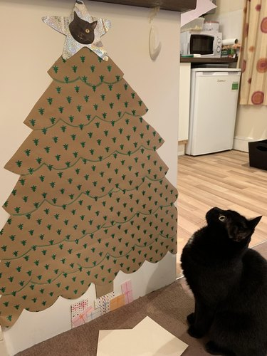 Cat looking at cardboard Christmas tree taped to wall