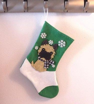 Scarf dog stocking