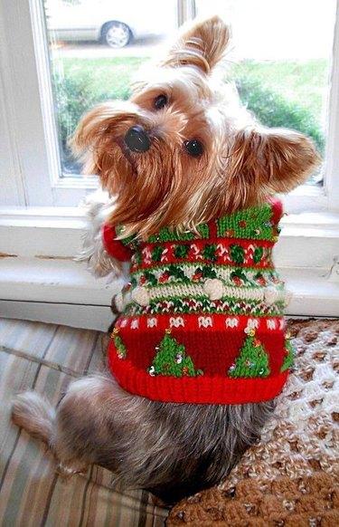 tiny tree sweater