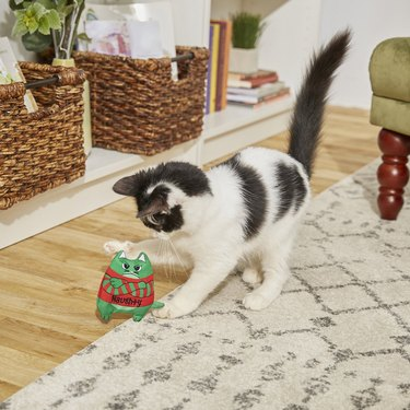 refillable catnip toy shaped like grumpy green grinch
