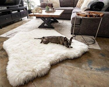 PupRug Polar Bear Faux Fur Hide Memory Foam Bed