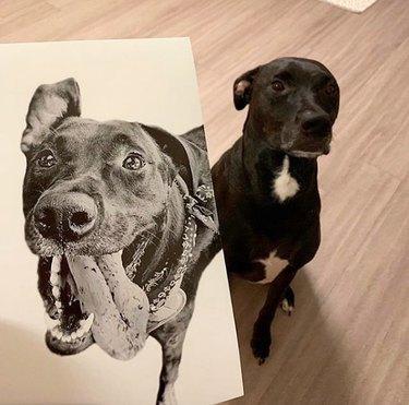 dog standing next to its custom portrait