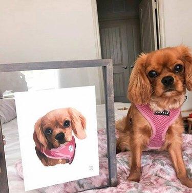 dog next to a framed custom portrait