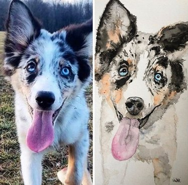 side by side of husky and its portrait