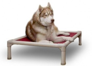 Kuranda Standard Almond PVC Dog Bed