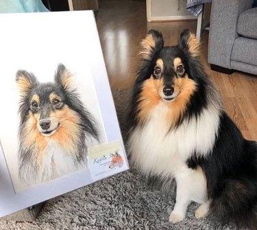 collie next to its portrait