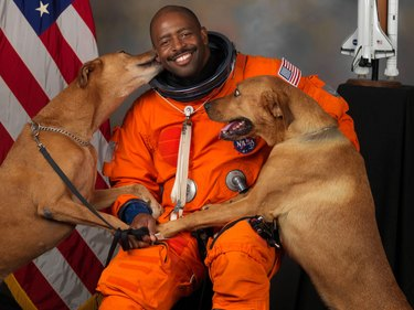 Astronaut being licked by two dogs