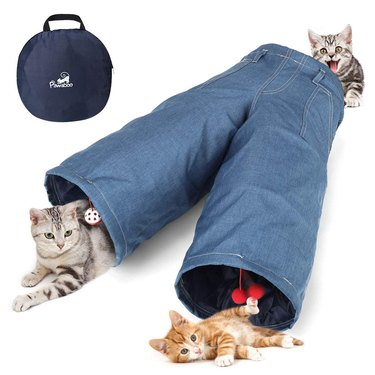 cats play in tunnel that looks like blue jeans