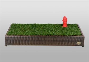 Porch Potty dog grass box