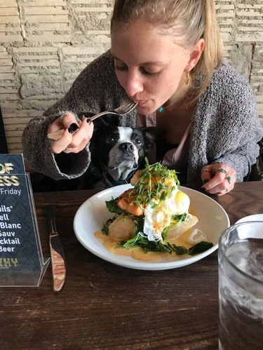 Dog sitting on woman's lap as she eats