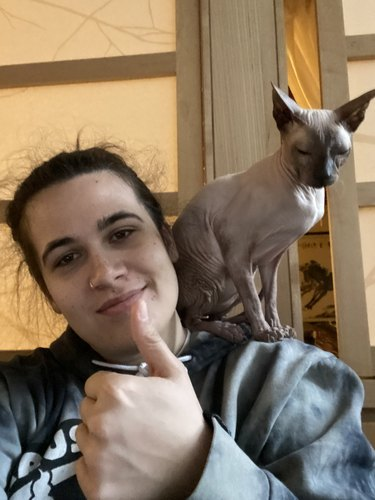person giving thumbs up with cat on their shoulder