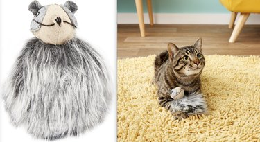 cat plays with Rowdy Raccoon Plush Electronic Sound Cat Toy