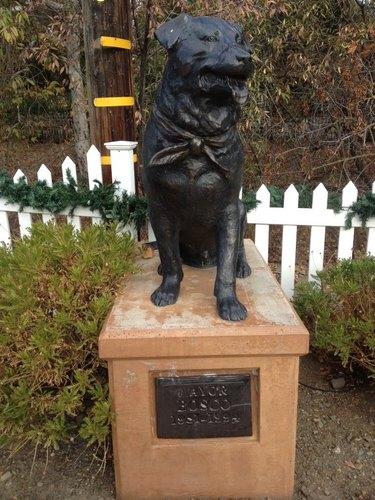 statue of Bosco the mayor dog