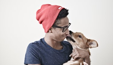 Why are dogs so much more obsessed with humans than cats are?