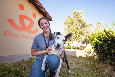 Take Action With Best Friends Animal Society To End The Killing Of Shelter Pets