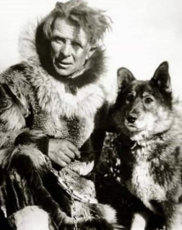 Togo the Sled dog, who helped deliver medicine in Alaska in 1925