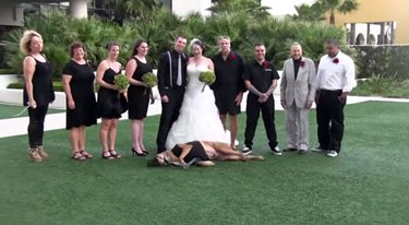 Dog in wedding taking a nap