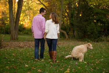 Dog pooping during engagement picture shoot