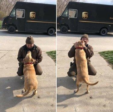 Dog tackling UPS driver
