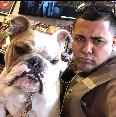 UPS driver and bulldog with matching frowns