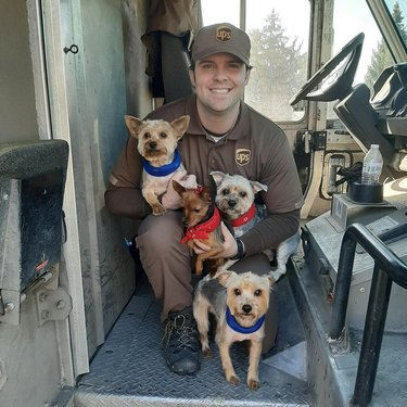 UPS driver in truck with four small dogs