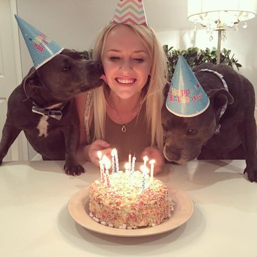 Woman and two dogs in party hats blowing out candles