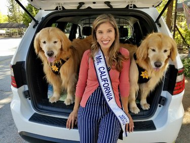 Ms. California with two Golden Retrievers
