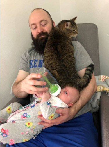 Dad feeding baby also there is a cat sitting on the baby