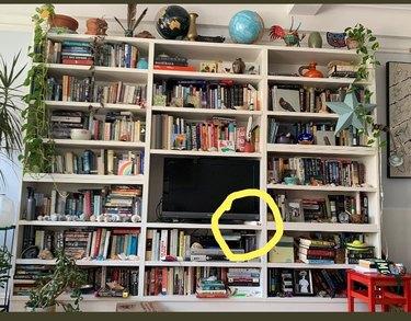 cat hides on bookshelf under tv