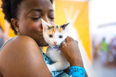 10 Purrfect Attractions You Don't Want to Miss At CatCon 2018
