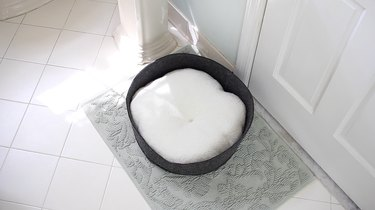 Cat bed in a bathroom