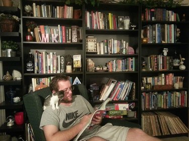 Kitten sitting on the shoulder of a guy reading in a library